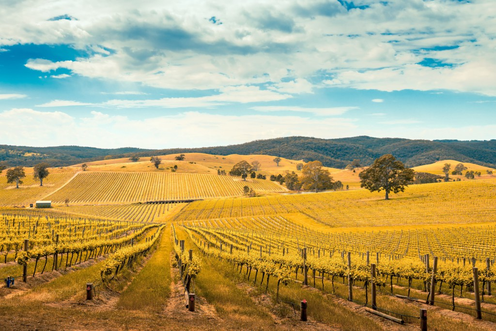 Barossa Valley, Australie